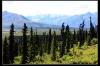 Alaska009