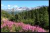 Alaska015