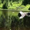 Mid Lake 0