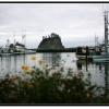 Harbor 0