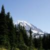 Rainier View 1